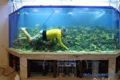 How to make an aquarium with your own hands