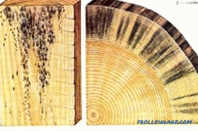 Protection of wooden structures from rotting and fungus: recommendations