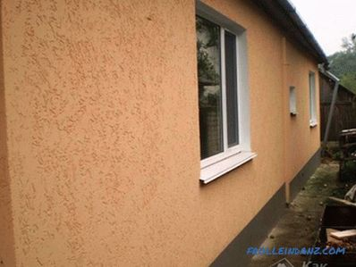 How to apply bark beetle plaster - peculiarities of bark beetle application