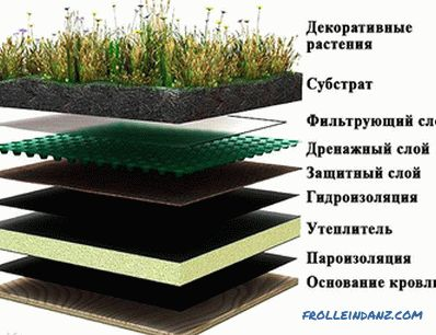 How to make a lawn on the roof