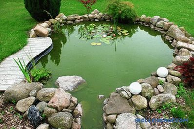 Pond do it yourself - how to make a pond at the site (+ photos)