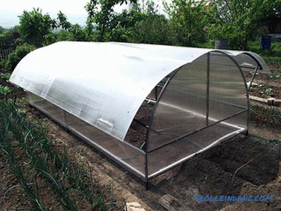 Greenhouse butterfly do it yourself - design features and installation