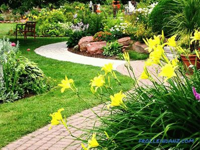 DIY landscape design (+ photos)