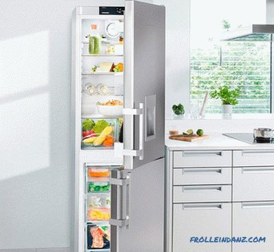 How to choose a refrigerator - expert advice