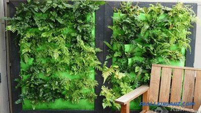 How to make a vertical garden - creating a vertical garden (+ photos)