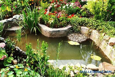 Artificial pond do it yourself - how to make a pond