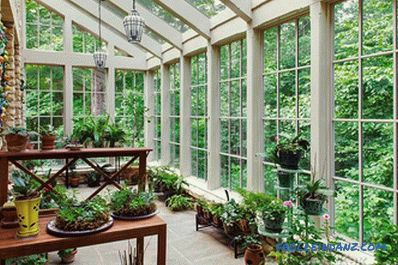 Winter garden in a private house with their own hands