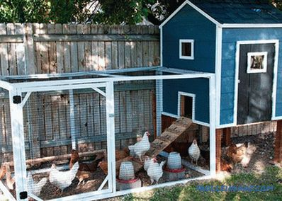 How to build a chicken coop with your own hands