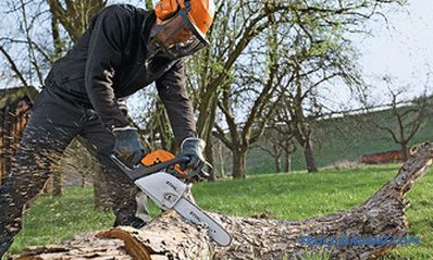 What brand of chainsaw to choose - the best manufacturers