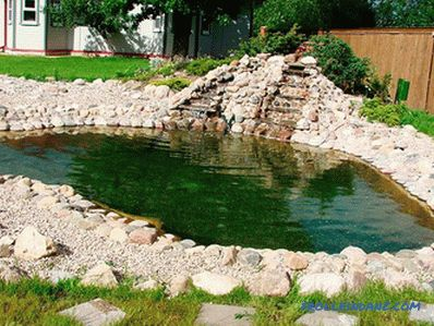 How to clean the pond with your own hands in the country